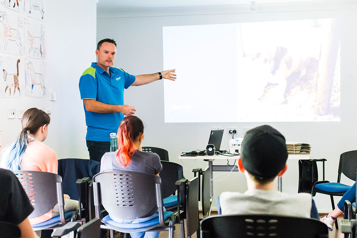 Strategies to Transform From a Trainer to a Workforce Educator